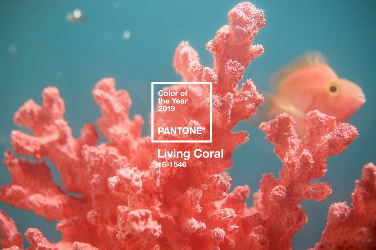 Living Coral: saiba como aplicar a cor do ano em ambientes