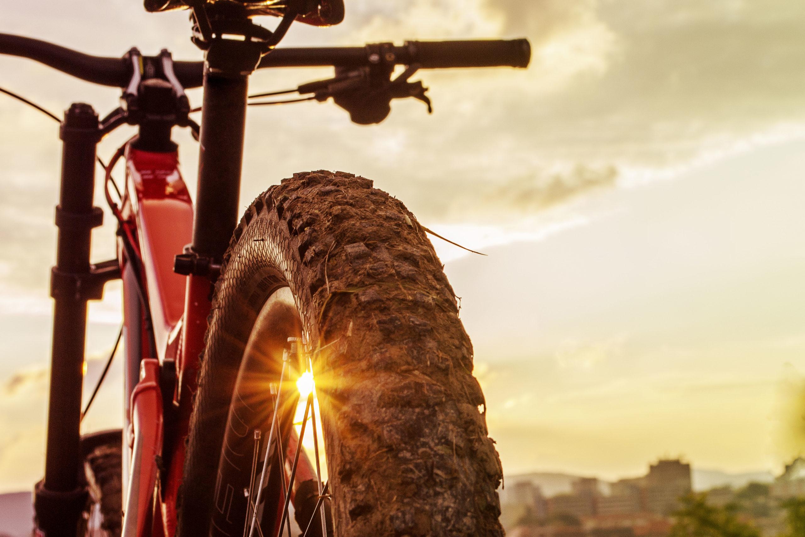 Conheça todos os benefícios de adotar a bicicleta como transporte